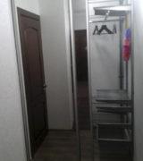 Гардеробная в прихожей с зеркальными дверьми-купе и сетчатой системой